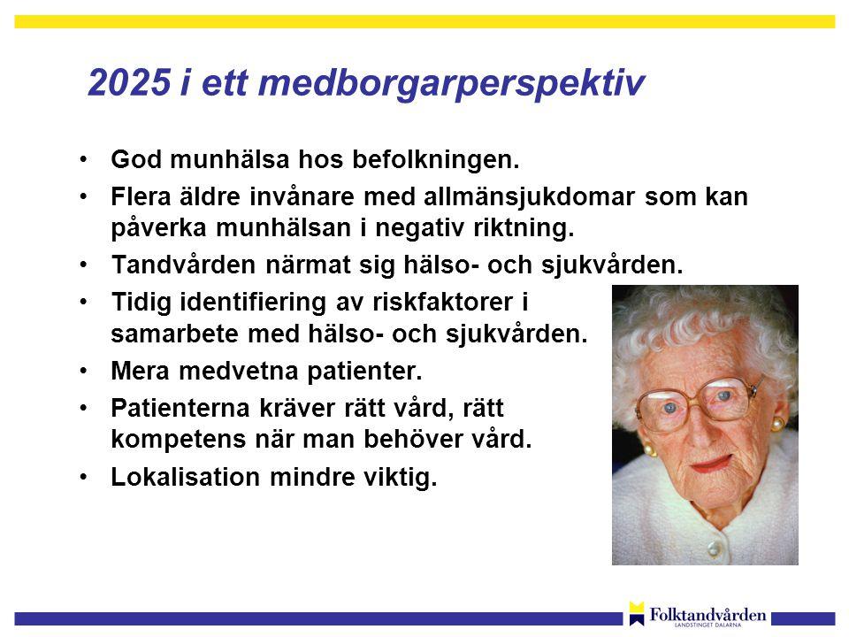 2025 i ett medborgarperspektiv