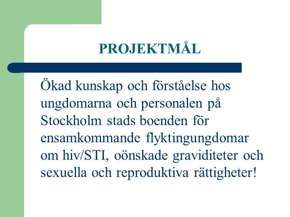 PROJEKTMÅL