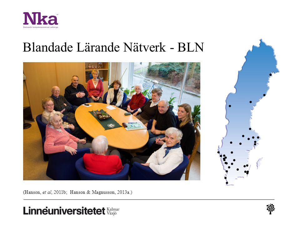 Blandade Lärande Nätverk - BLN