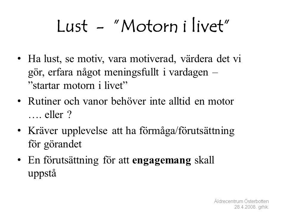Lust - Motorn i livet Ha lust, se motiv, vara motiverad, värdera det vi gör, erfara något meningsfullt i vardagen – startar motorn i livet