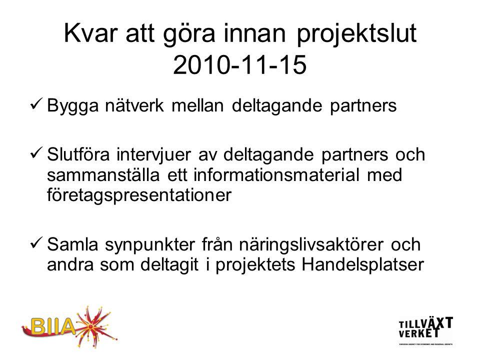 Kvar att göra innan projektslut 2010-11-15