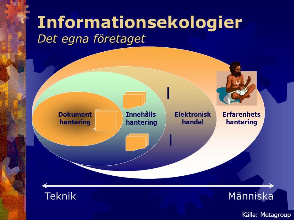 Informationsekologier Det egna företaget
