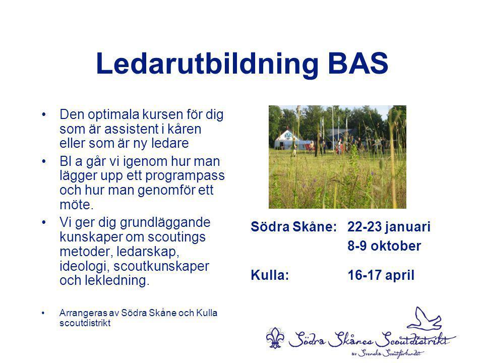 Ledarutbildning BAS Den optimala kursen för dig som är assistent i kåren eller som är ny ledare.