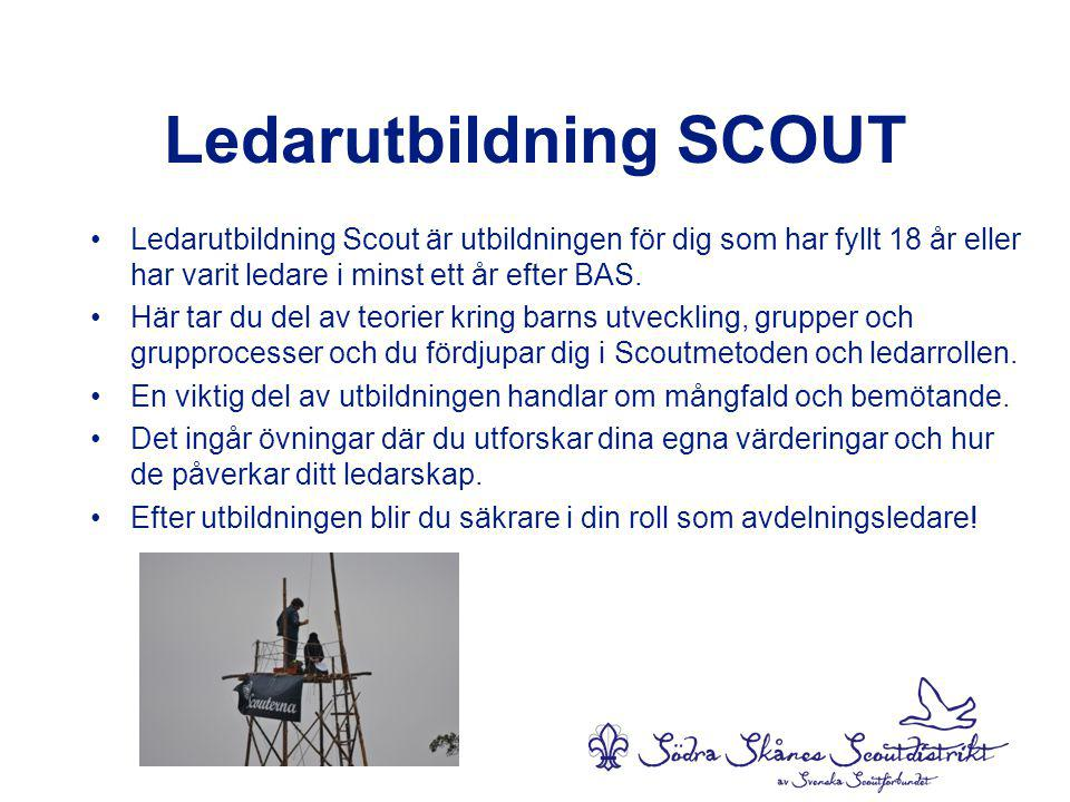 Ledarutbildning SCOUT