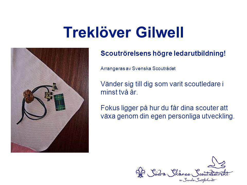 Treklöver Gilwell Scoutrörelsens högre ledarutbildning!