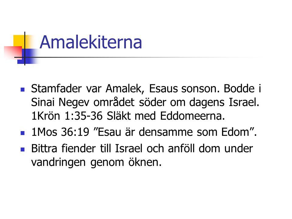 Amalekiterna Stamfader var Amalek, Esaus sonson. Bodde i Sinai Negev området söder om dagens Israel. 1Krön 1:35-36 Släkt med Eddomeerna.