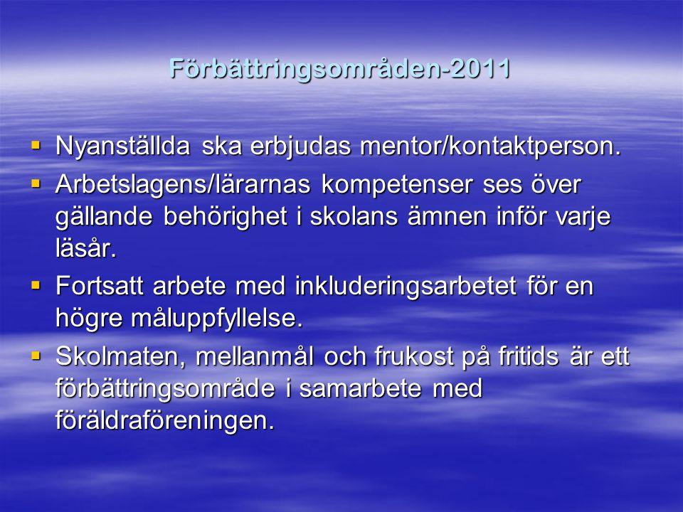 Förbättringsområden-2011