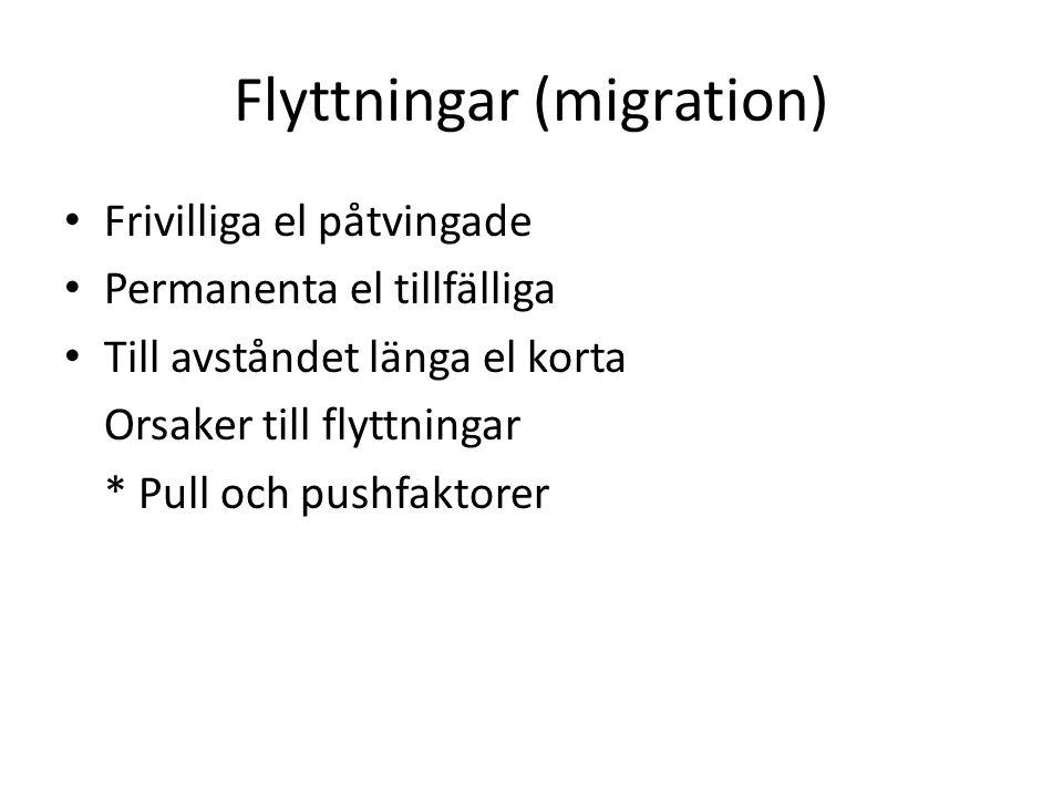 Flyttningar (migration)