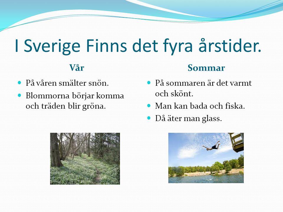 I Sverige Finns det fyra årstider.