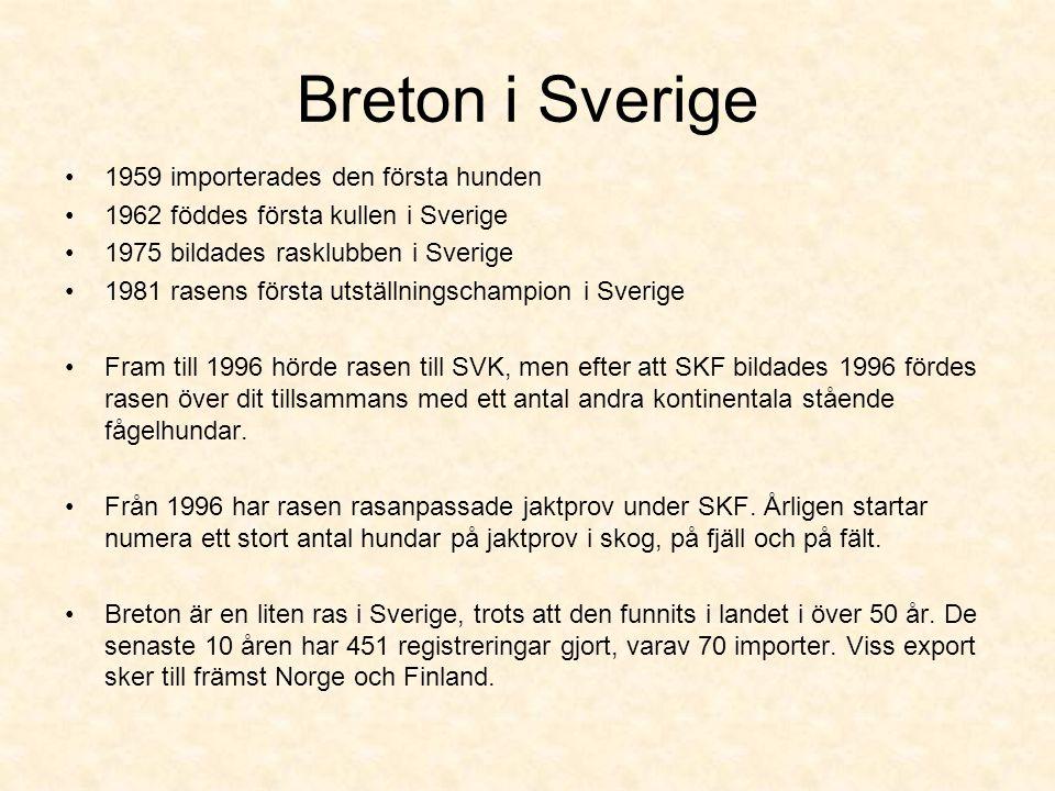 Breton i Sverige 1959 importerades den första hunden