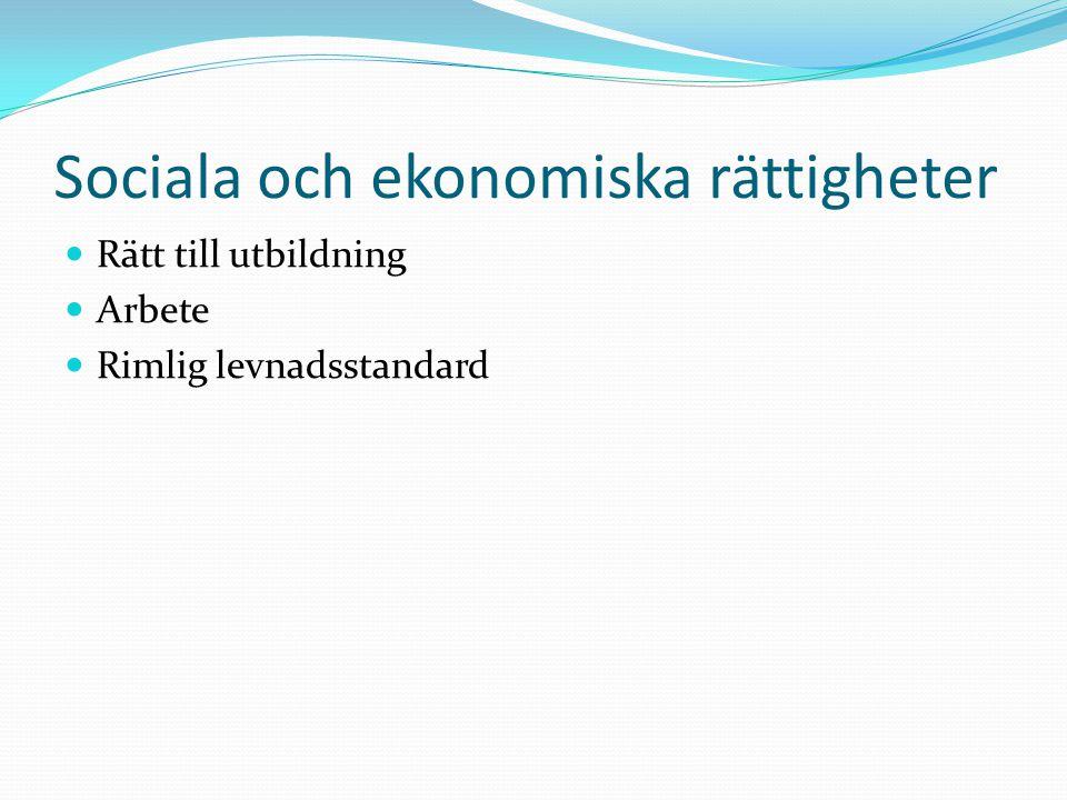Sociala och ekonomiska rättigheter