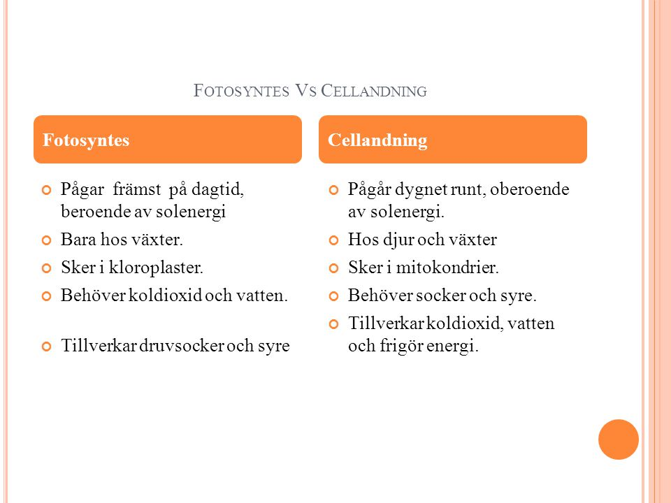 Fotosyntes Vs Cellandning