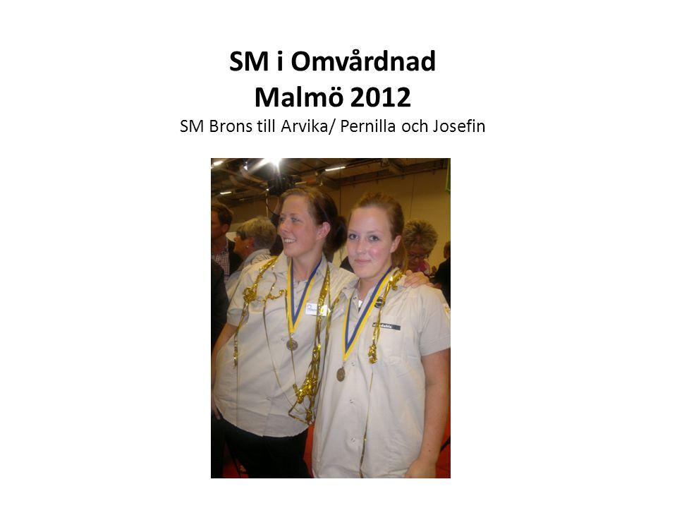 SM i Omvårdnad Malmö 2012 SM Brons till Arvika/ Pernilla och Josefin