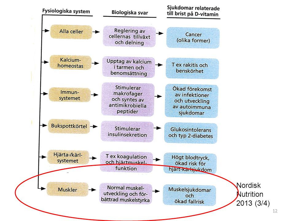 Nordisk Nutrition 2013 (3/4)