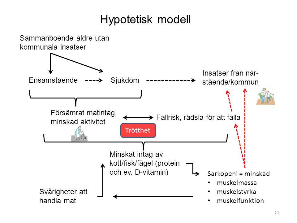Hypotetisk modell Sammanboende äldre utan kommunala insatser