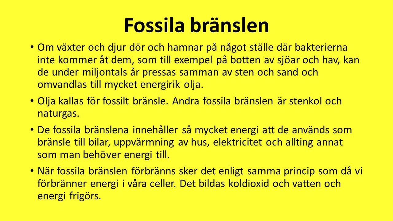 Fossila bränslen