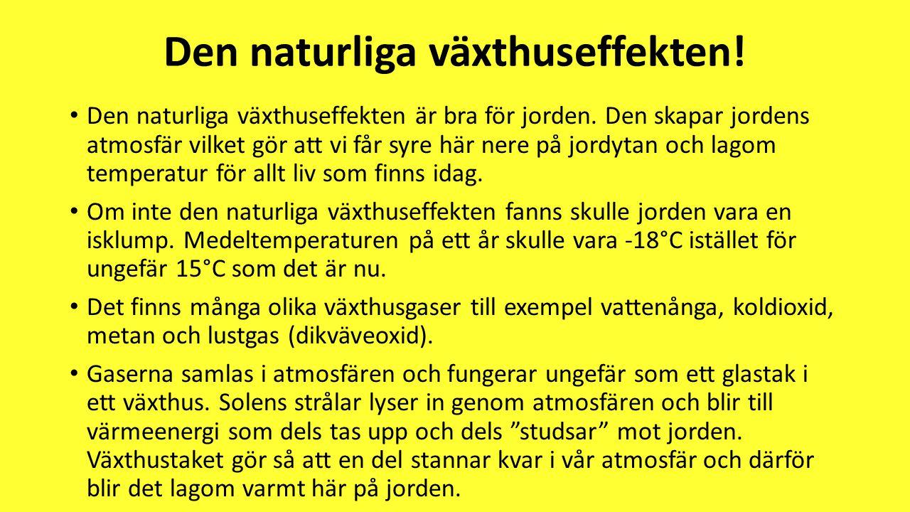 Den naturliga växthuseffekten!