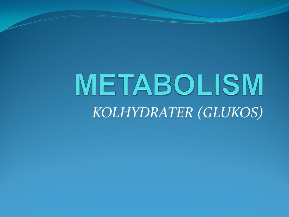 METABOLISM KOLHYDRATER (GLUKOS)