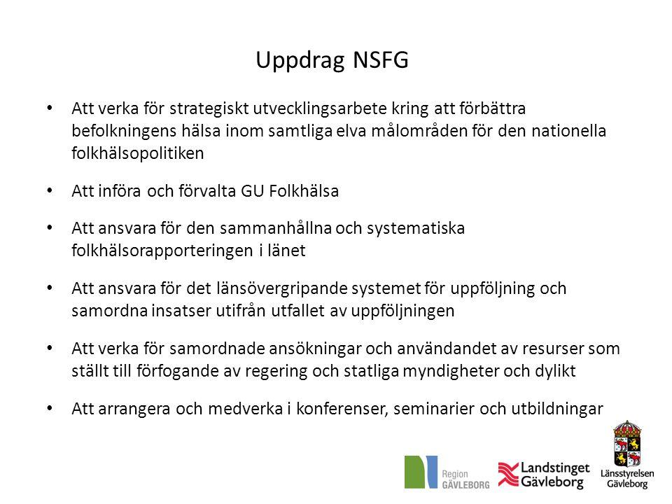 Uppdrag NSFG