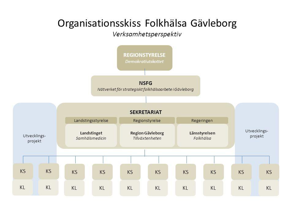 Organisationsskiss Folkhälsa Gävleborg Verksamhetsperspektiv