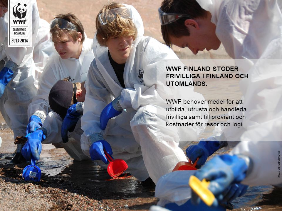 WWF FINLAND STÖDER FRIVILLIGA I FINLAND OCH UTOMLANDS