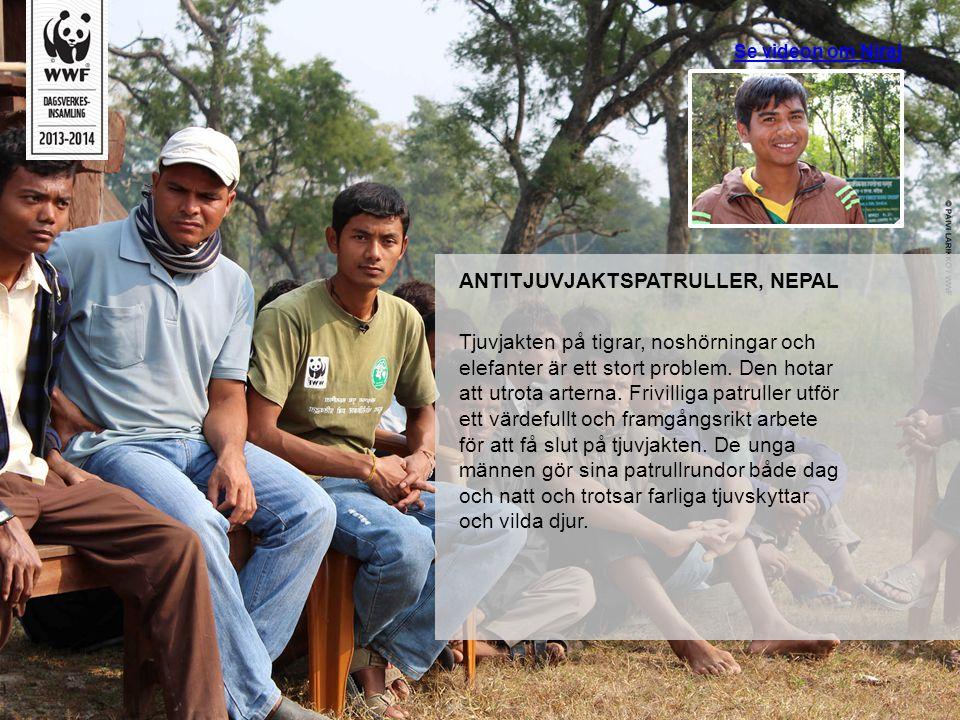 ANTITJUVJAKTSPATRULLER, NEPAL