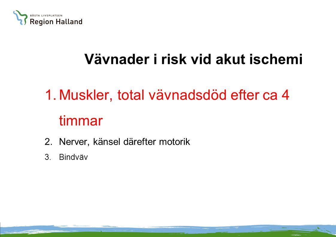 Vävnader i risk vid akut ischemi