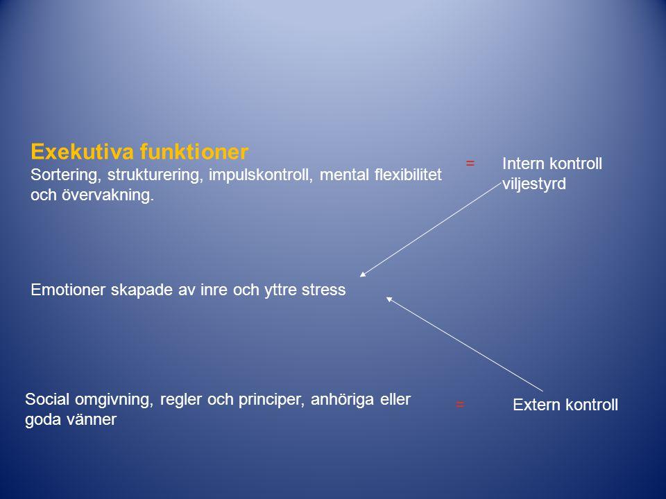 Exekutiva funktioner Sortering, strukturering, impulskontroll, mental flexibilitet. och övervakning.