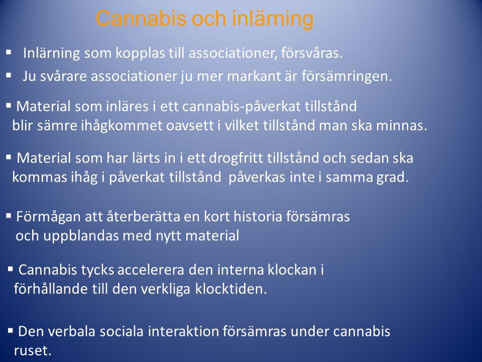 Cannabis och inlärning