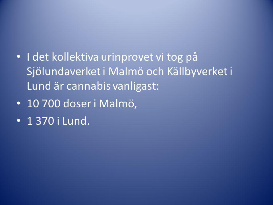 I det kollektiva urinprovet vi tog på Sjölundaverket i Malmö och Källbyverket i Lund är cannabis vanligast: