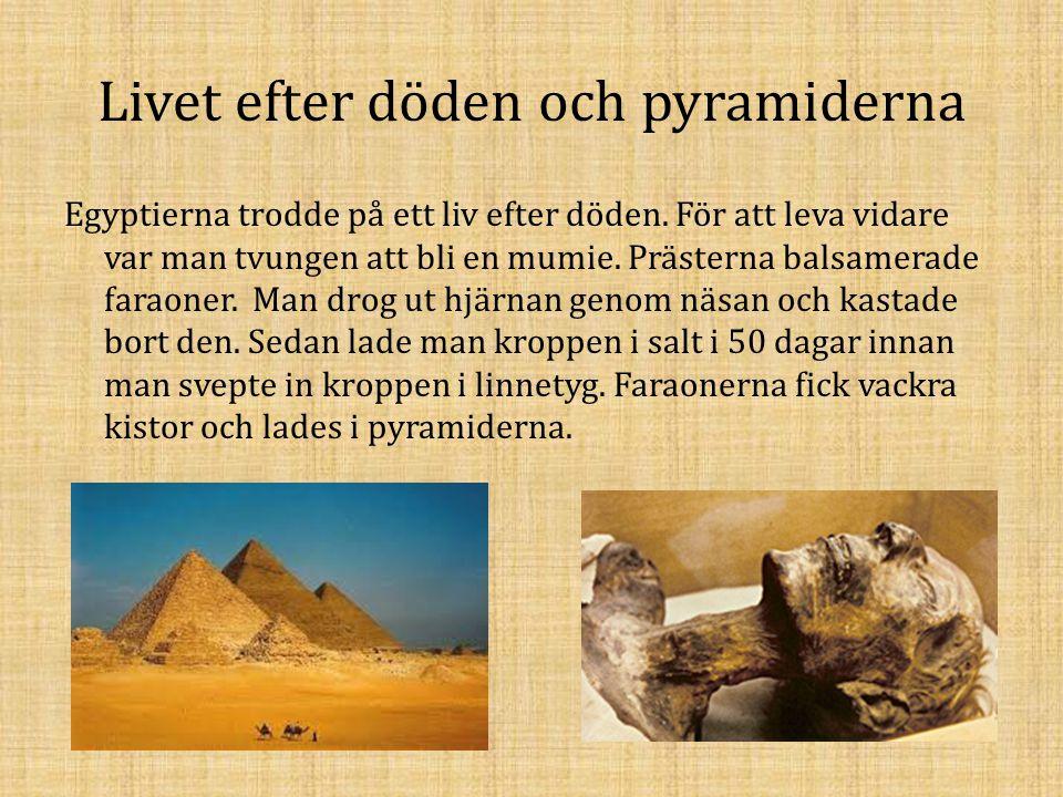 Livet efter döden och pyramiderna