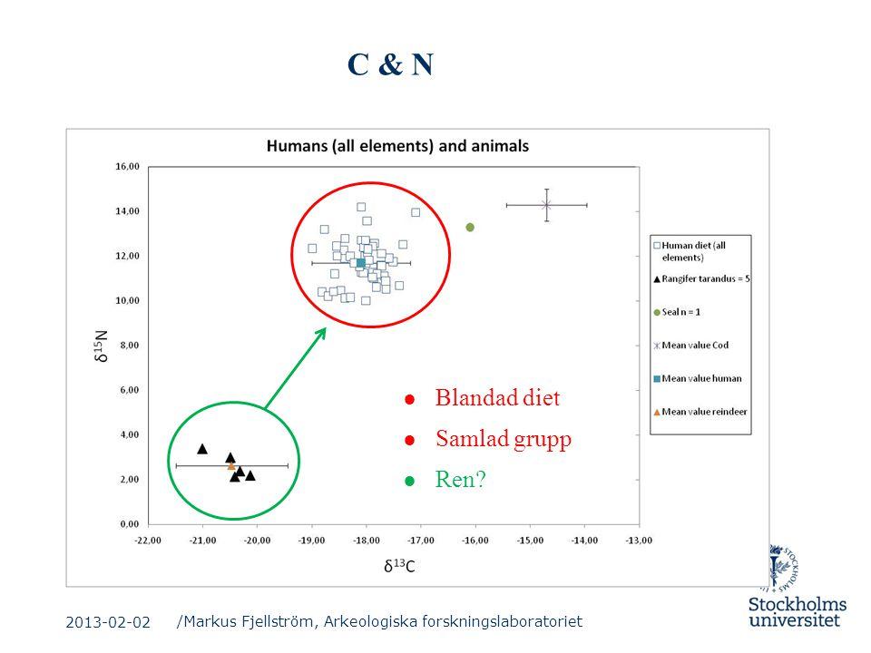 C & N Blandad diet Samlad grupp Ren 2013-02-02