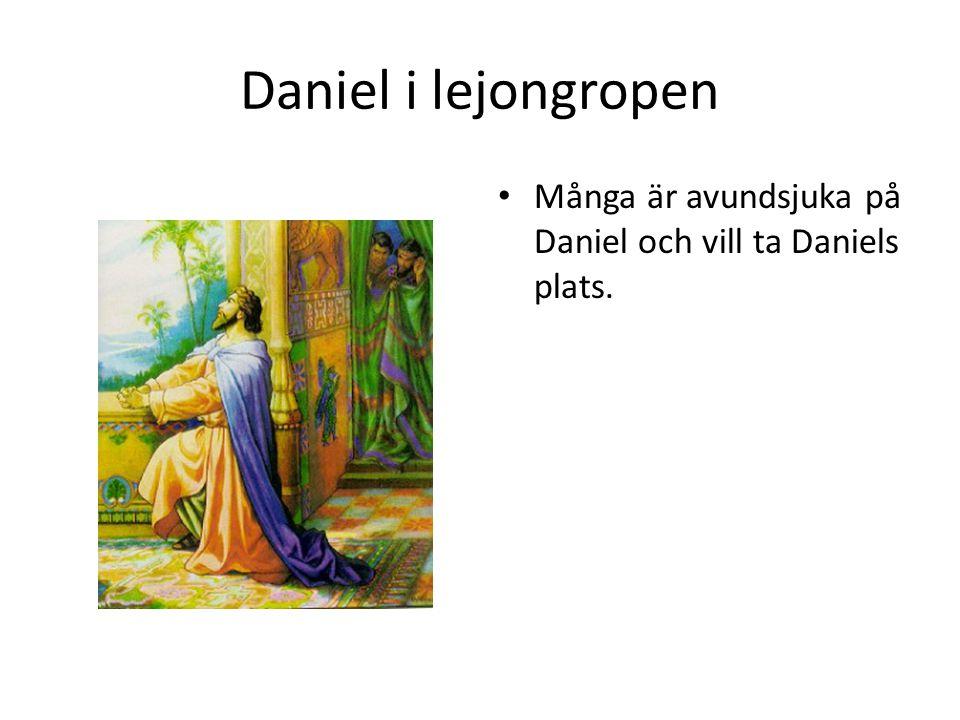 Daniel i lejongropen Många är avundsjuka på Daniel och vill ta Daniels plats.