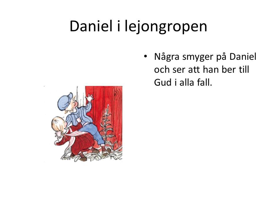 Daniel i lejongropen Några smyger på Daniel och ser att han ber till Gud i alla fall.