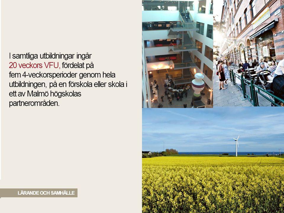 I samtliga utbildningar ingår 20 veckors VFU, fördelat på fem 4-veckorsperioder genom hela utbildningen, på en förskola eller skola i ett av Malmö högskolas partnerområden.