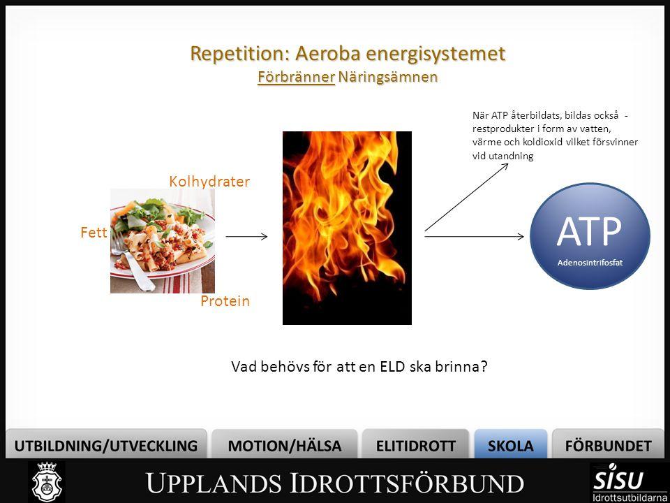 Repetition: Aeroba energisystemet Förbränner Näringsämnen