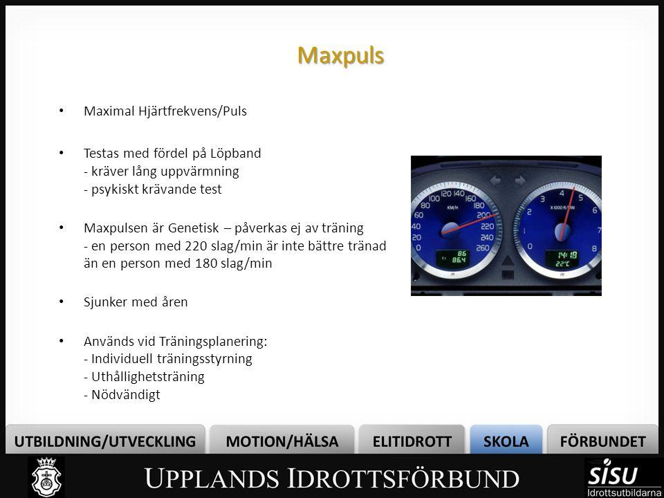 Maxpuls Maximal Hjärtfrekvens/Puls