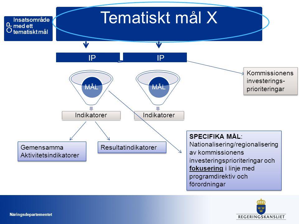 Tematiskt mål X Val av teman och investeringsprioriteter