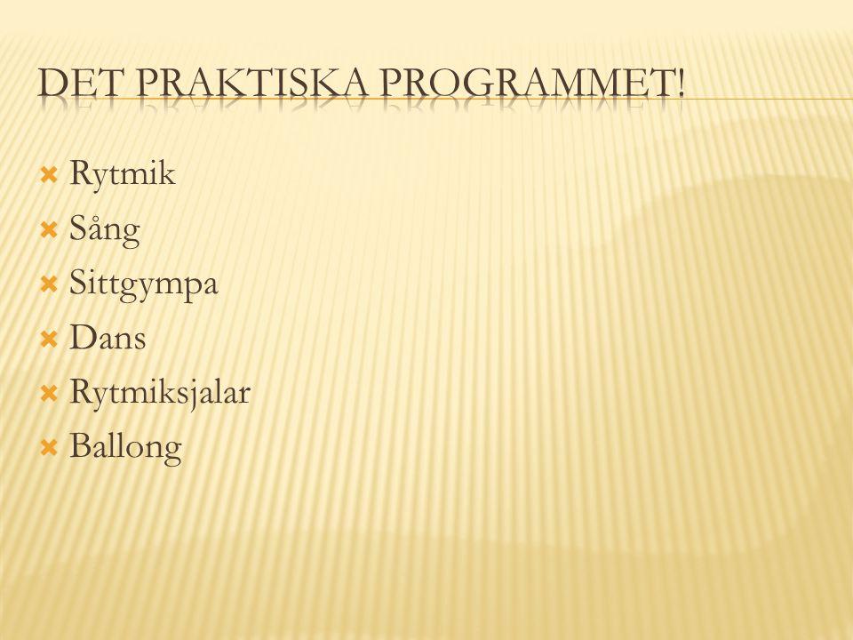 Det praktiska programmet!