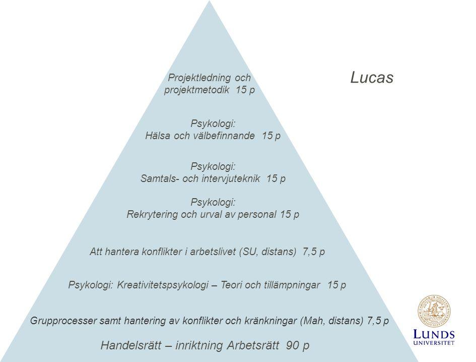 Lucas Handelsrätt – inriktning Arbetsrätt 90 p