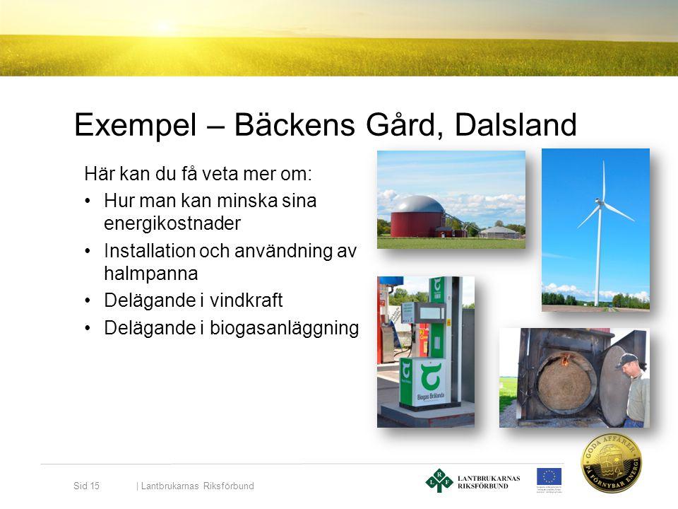 Exempel – Bäckens Gård, Dalsland