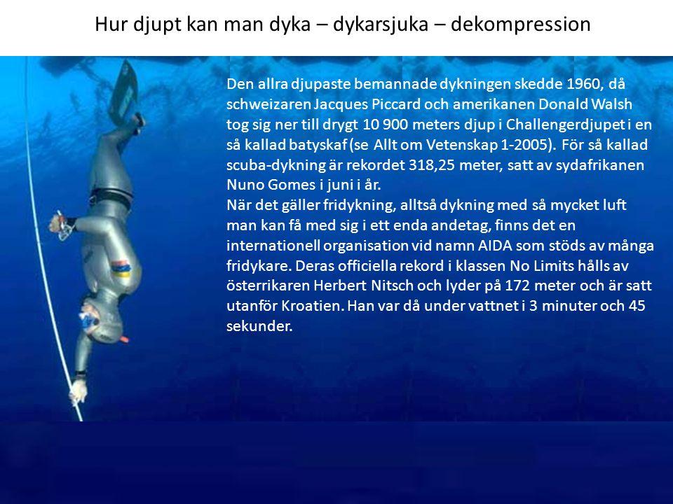 Hur djupt kan man dyka – dykarsjuka – dekompression