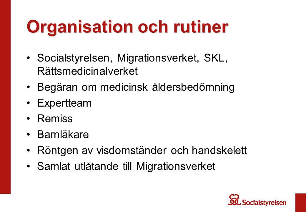 Organisation och rutiner