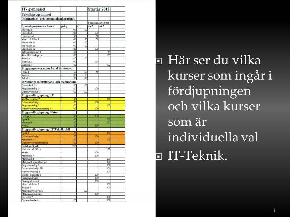 Här ser du vilka kurser som ingår i fördjupningen och vilka kurser som är individuella val