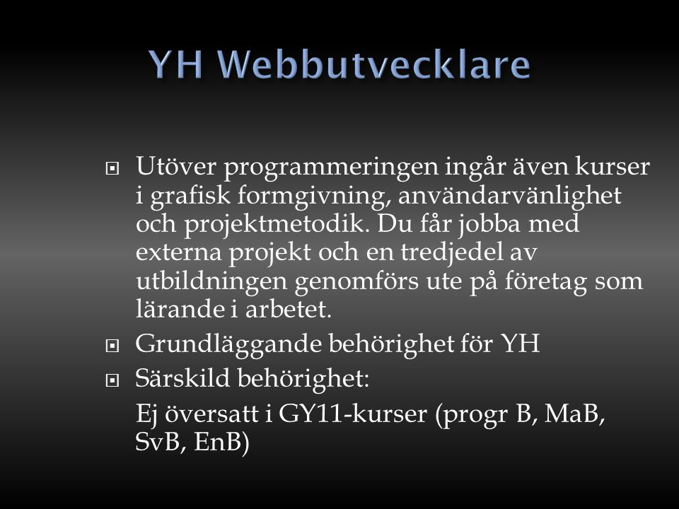 YH Webbutvecklare