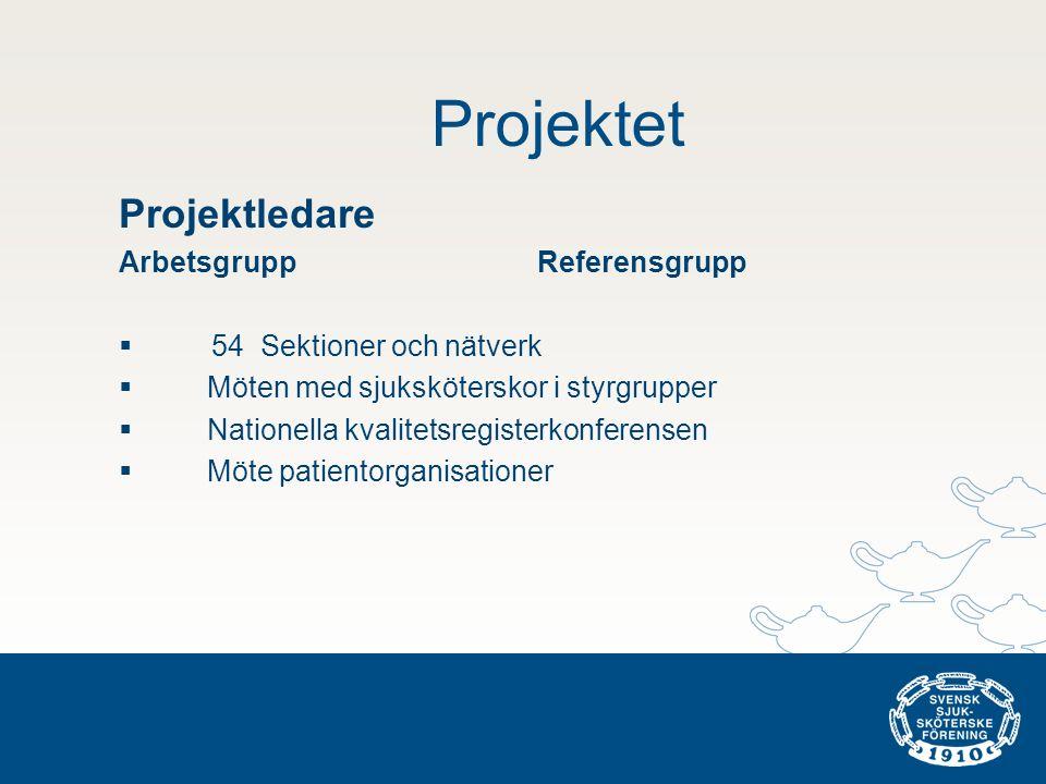 Projektet Projektledare Arbetsgrupp Referensgrupp