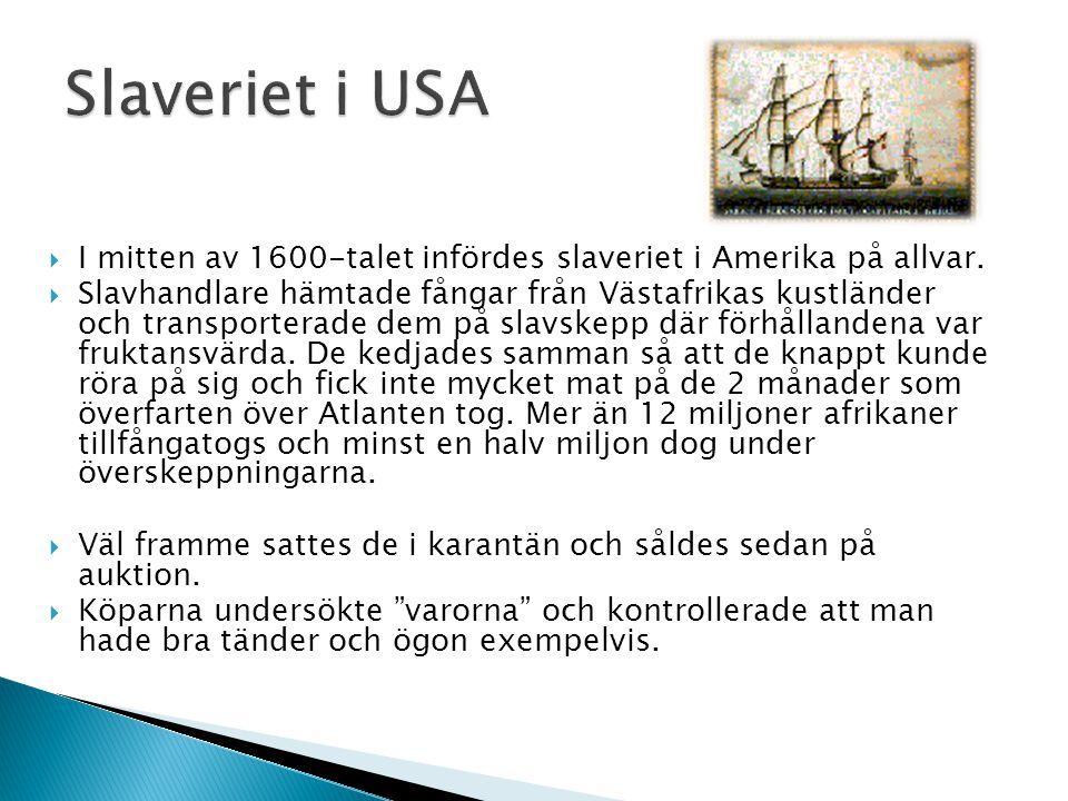 Slaveriet i USA I mitten av 1600-talet infördes slaveriet i Amerika på allvar.
