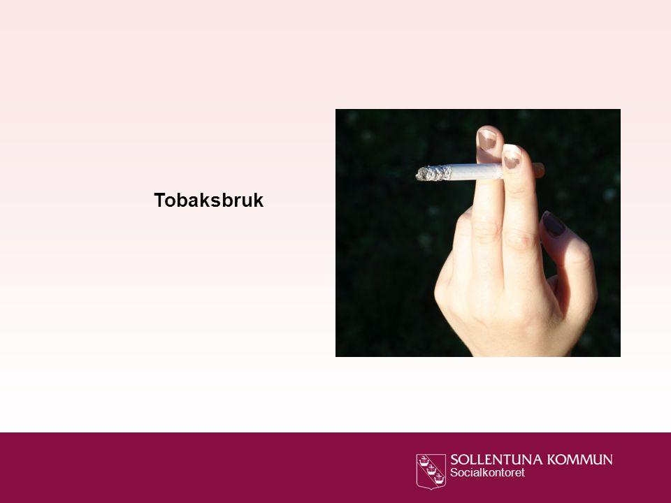 Tobaksbruk