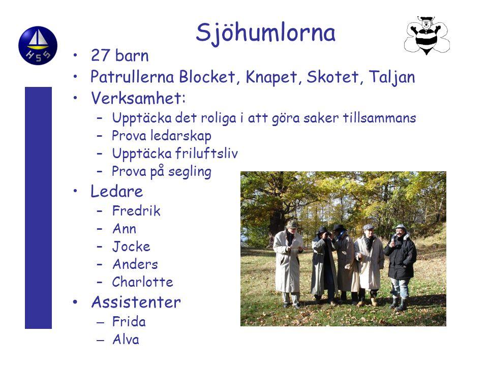 Sjöhumlorna 27 barn Patrullerna Blocket, Knapet, Skotet, Taljan