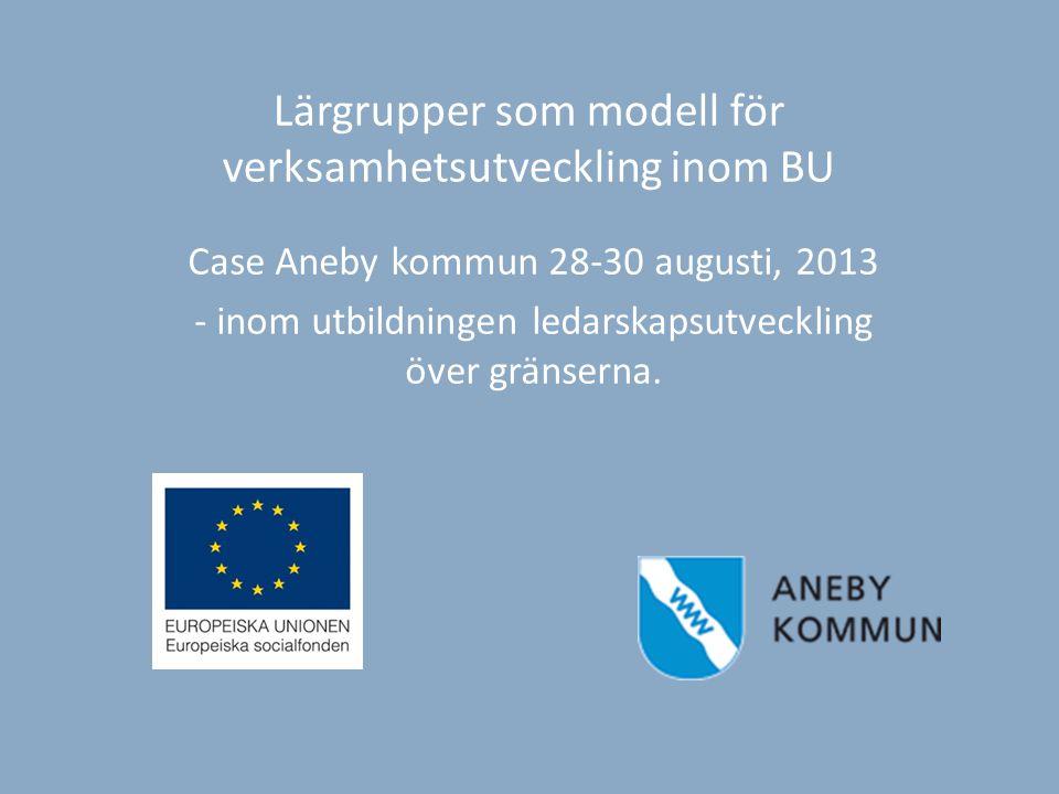 Lärgrupper som modell för verksamhetsutveckling inom BU